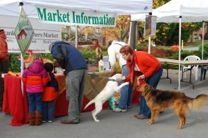 Franklin Farmers Market moves to ban dogs | Franklin Farmers Market,dogs,dog ban,Franklin Home Page,FHP