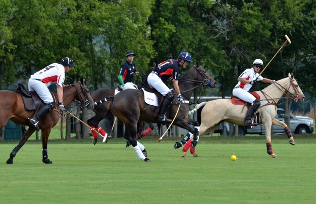 Chukkers for Charity polo match returning to Grassland for 20th year