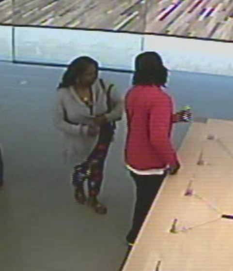 Police searching for suspects after three iPhones stolen from CoolSprings Apple